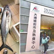 Man for size: Viral photo shows giant mackerel at Tai Po market
